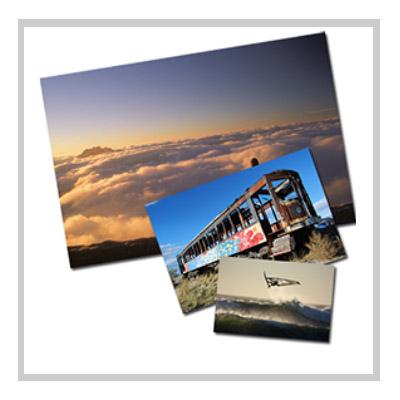 Knop foto's bestellen bij Litto Foto Centrale